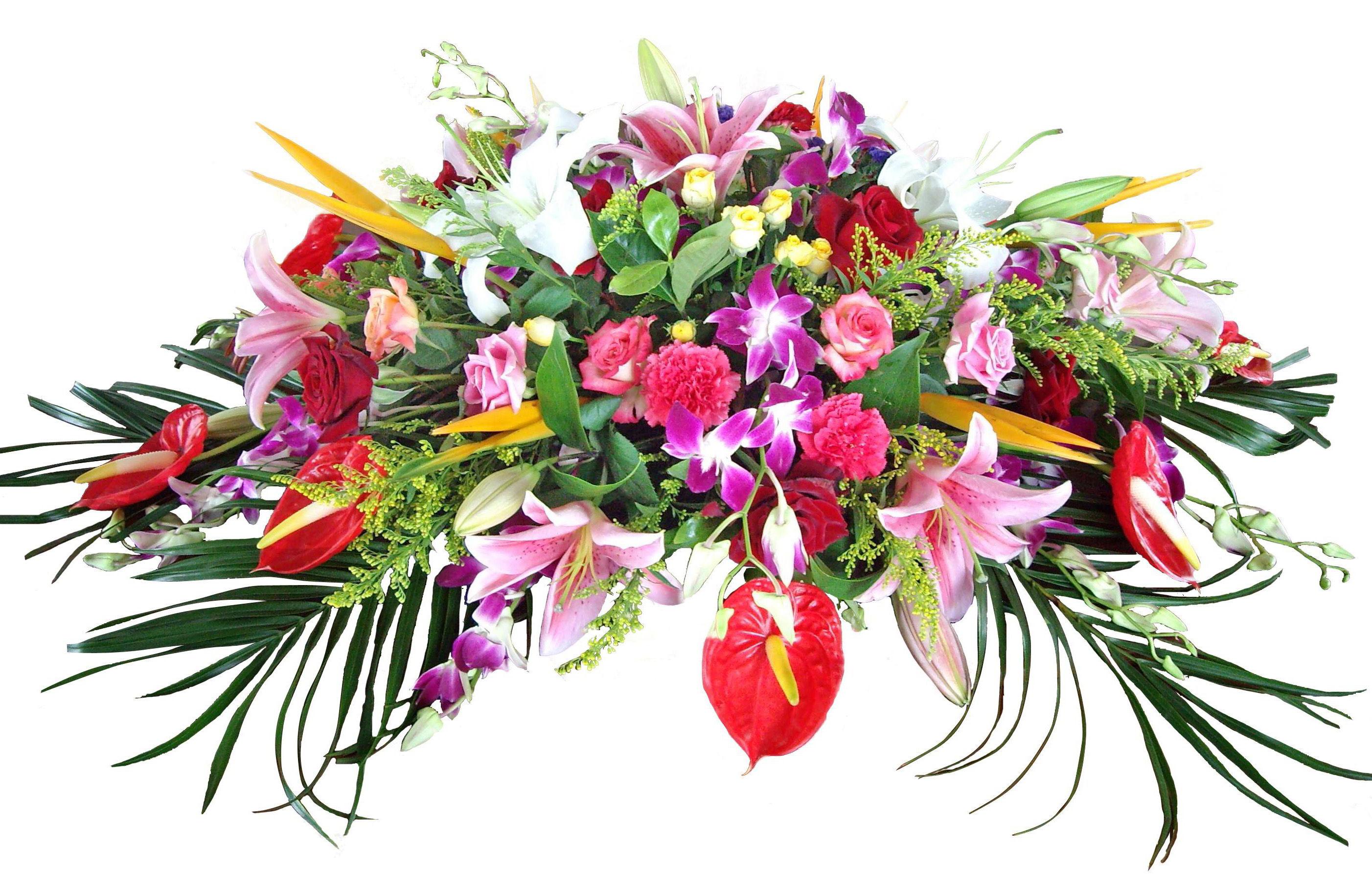 Доставка цветов в Хабаровске по самым низким ценам Розы