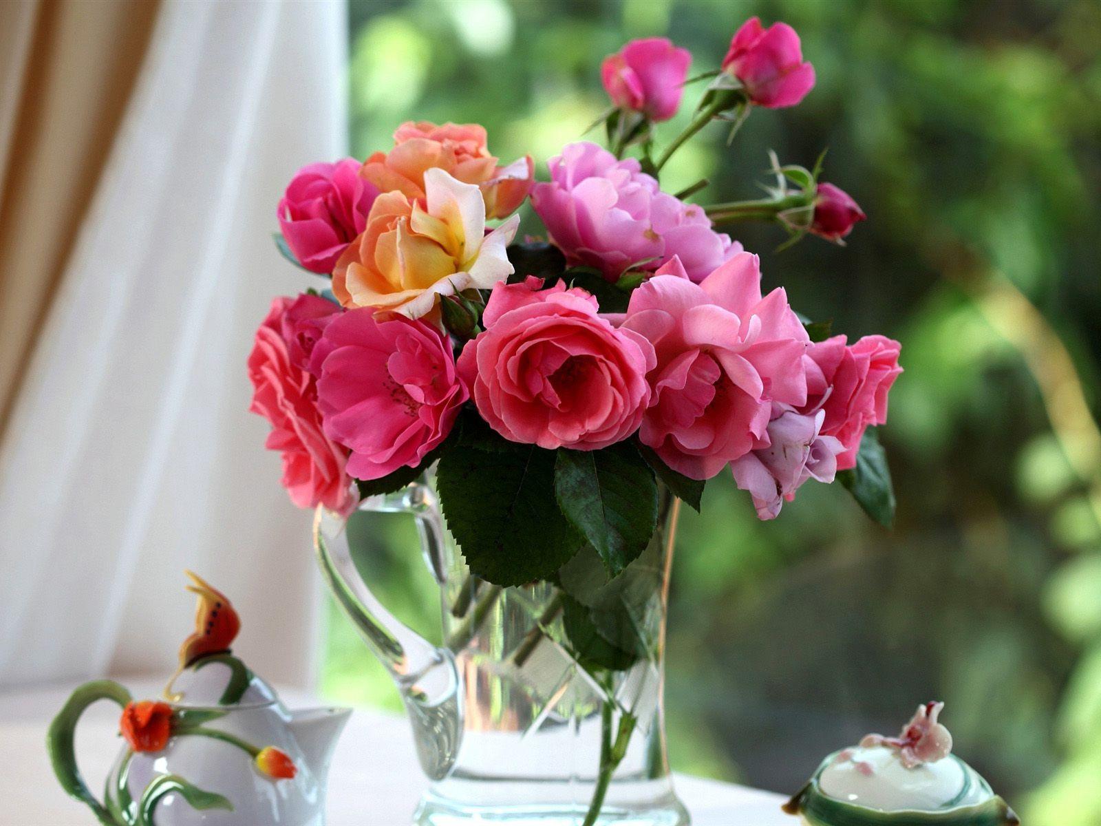Картинки цветы луговые